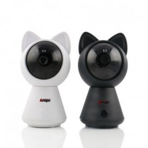 دوربین گربه آنسپو